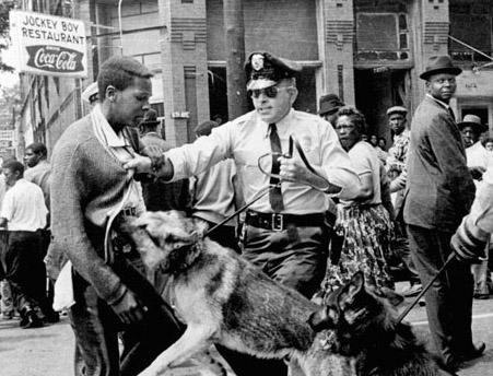 race protest dogs