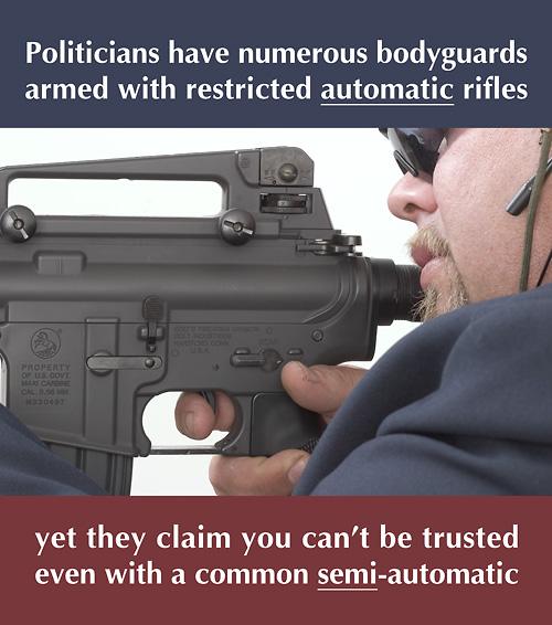 politician bodyguard oleg volk