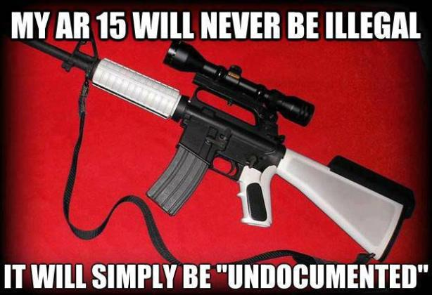 undocumented ar 15