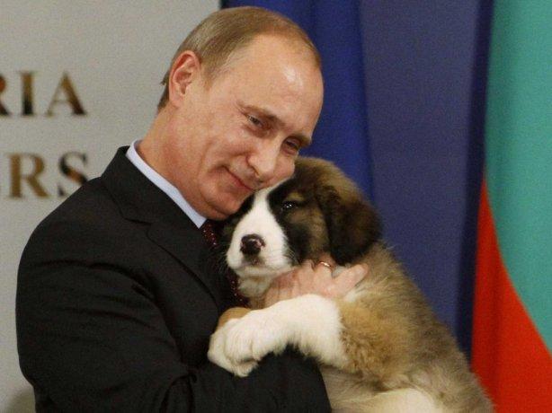 putin with puppy