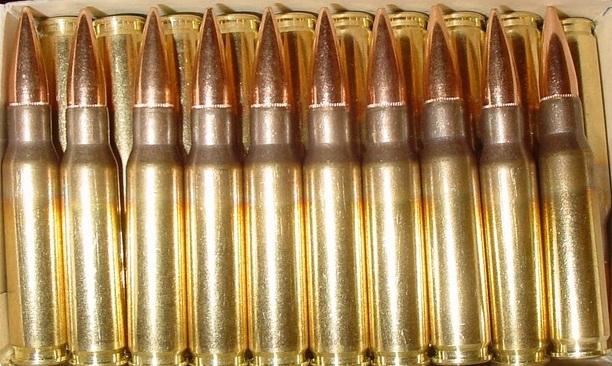 308 ammo
