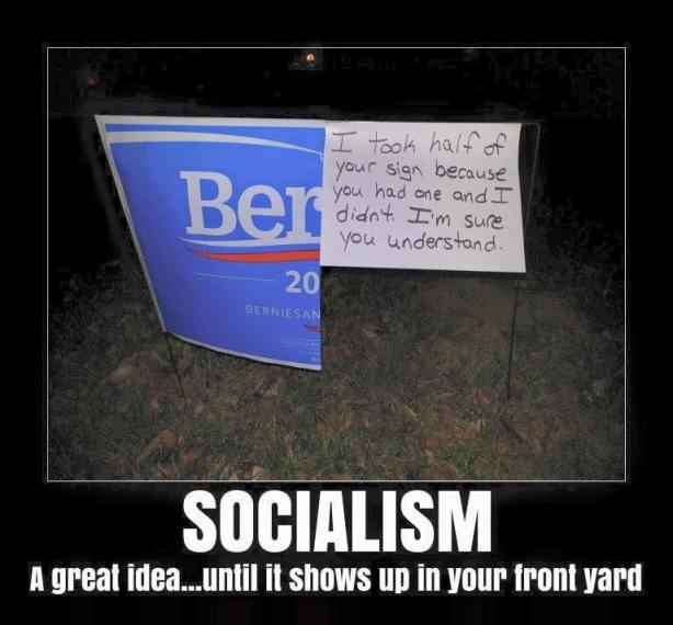 bernie sign socialism 1